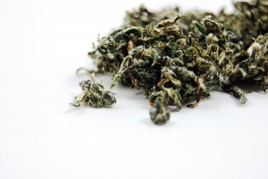 Mugwort Tea Leaf