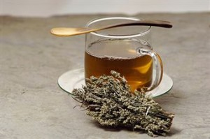 Mugwort Tea Pictures