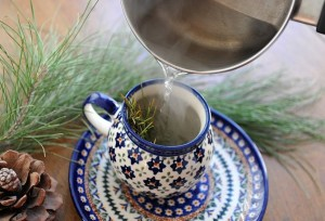 Pictures of Pine Needle Tea