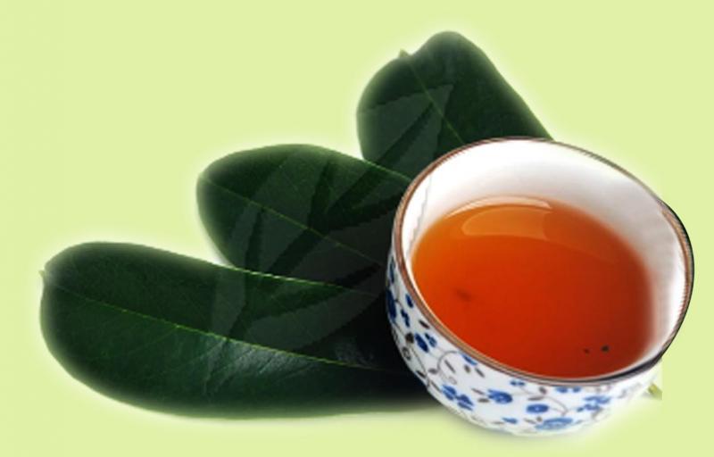 Buy Soursop Leaf Tea Benefits Preparation Side Effects