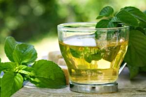 Spearmint Leaf Tea