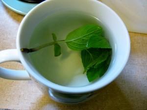 Spearmint Tea Images