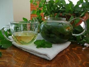 Spearmint Tea Photos