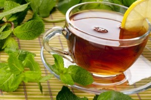 Catnip Tea Images