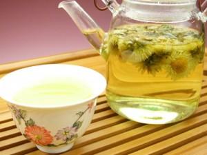 Chrysanthemum Tea Images