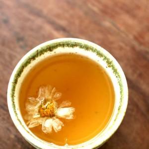 Chrysanthemum Tea Photos