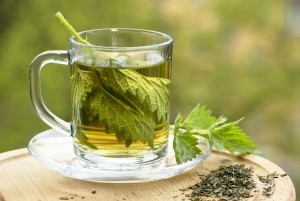 Nettle Tea Pictures
