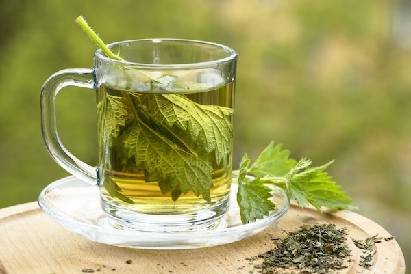 How to make nettle leaf tea