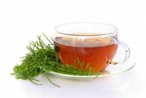 Rooibos Tea Photos