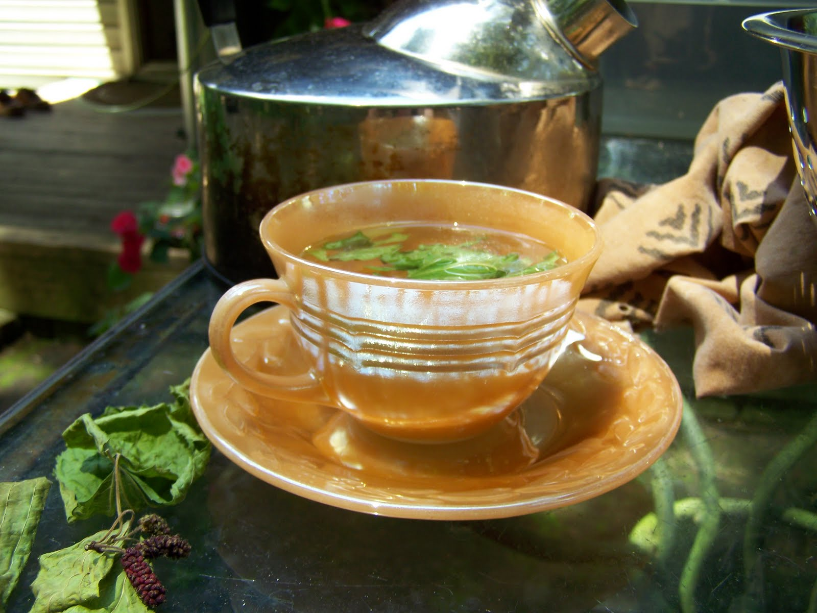 Buy Mulberry Leaf Tea Benefits How To Make Side Effects