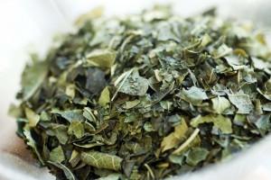 Mulberry Tea Leaves