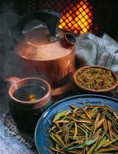 Labrador Tea Images