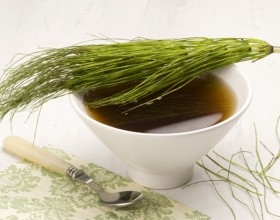 Horsetail Tea Pictures