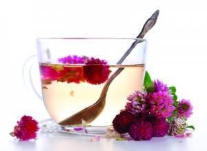 Red Clover Tea Pictures