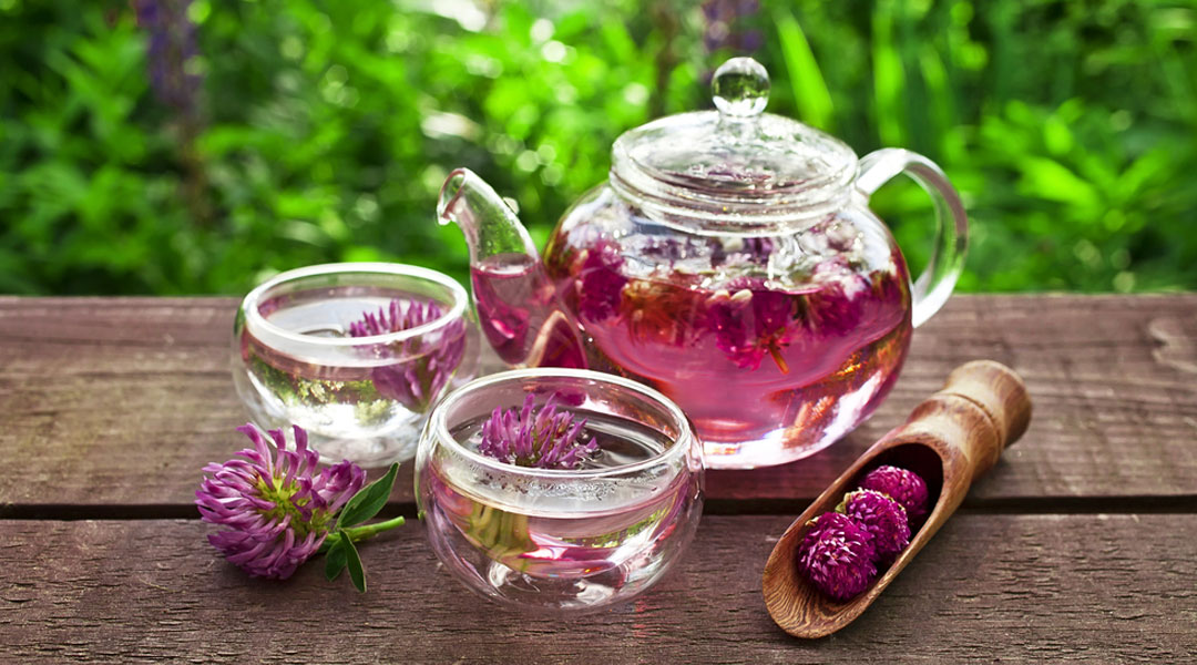 What is red clover tea used for