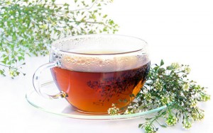 Yarrow Tea Images