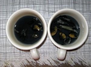 Mushroom Tea Images
