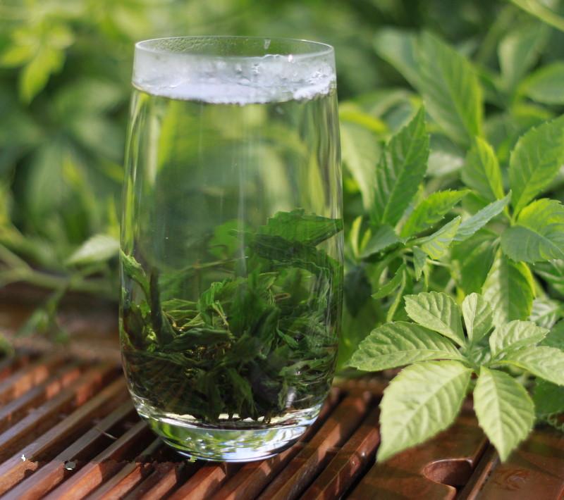 buy gynostemma jiaogulan tea benefits side effects how to make herbal teas online. Black Bedroom Furniture Sets. Home Design Ideas