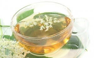 Elderflower Tea Pictures