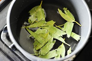 Eucalyptus Leaves Tea