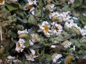 Feverfew Dried Flower