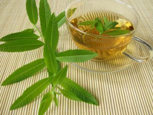 Lemon Verbena Tea Photos