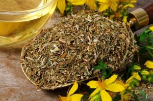 Dried St. Johns Wort Tea