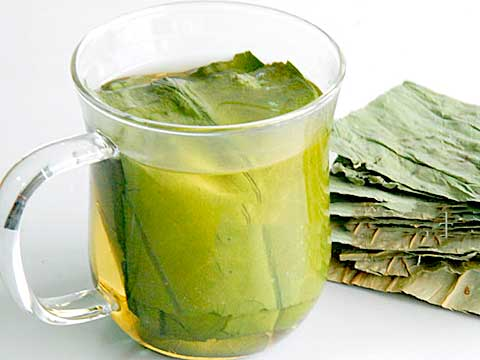 Buy Lotus Tea Benefits How To Make Side Effects