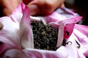 Lotus Tea Pictures