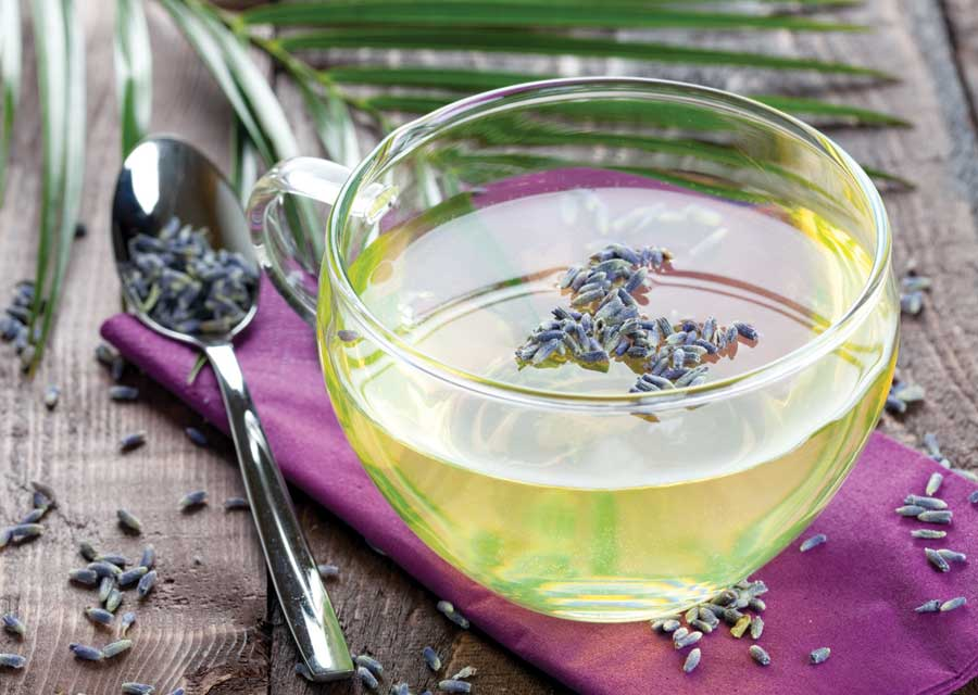 Buy Lavender Tea Benefits How To Make Side Effects