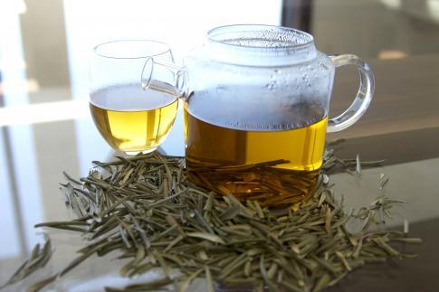 Olive Leaf Tea Pictures