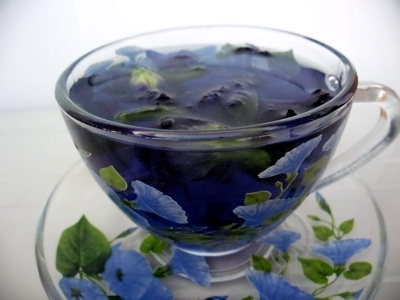 Butter Flower Pea Tea Benefits Side Effects How To Make