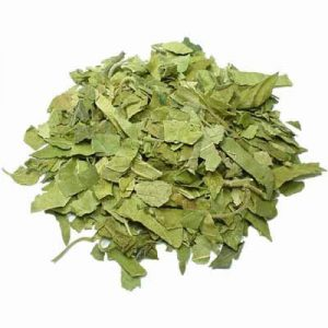 Gymnema Sylvestre Tea Leaves