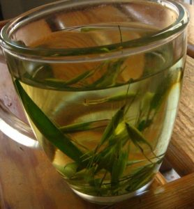 Oatstraw Tea Pictures