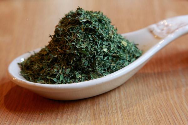Alfalfa Leaf