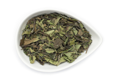 Buy White Tea Benefits How To Make Side Effects